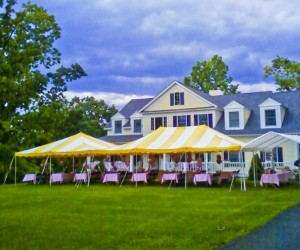 20x30 Party Tents Image